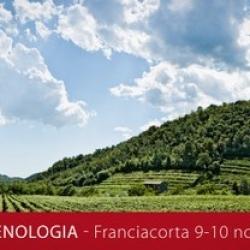 ENOLOGIA: soluzione, servizi, mercato e sviluppo delle competenze territoriali.