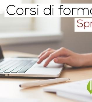 Formazioni sul Software Gestionale Spring SQL